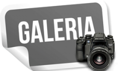 galeria fotos